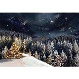 YongFoto 2,2x1,5m Fotografía Fondo para Invierno Brillante...