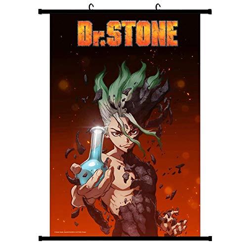 redCherry Póster de anime manga con diseño de Dr. Stone (20 x 30 cm)