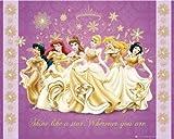 Disney Princess–Glanz–Mini Poster–40cm