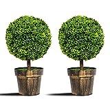 COSTWAY Juego de 2 Plantas de Redondos Artificiales Altura de 55 cm Plantas...