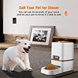 Zoom IMG-1 sailnovo alimentatore automatico per cani