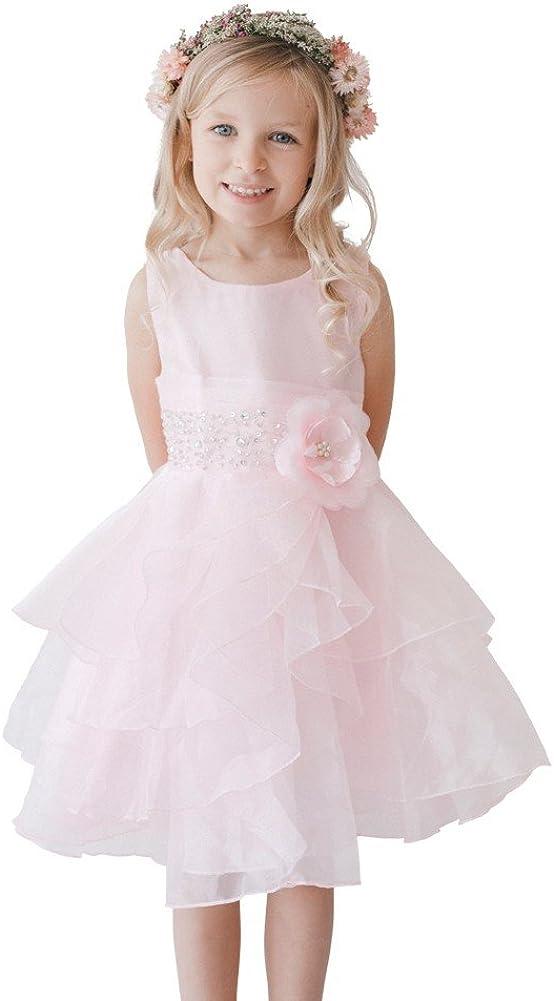 Tip Top Kids Little Girls Pink Organza Layered Glitter Rhinestone Flower Girl Dress 2-6