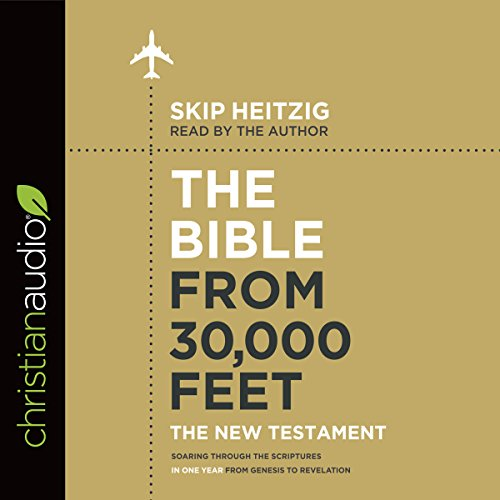 The Bible from 30,000 Feet: The New Testament cover art