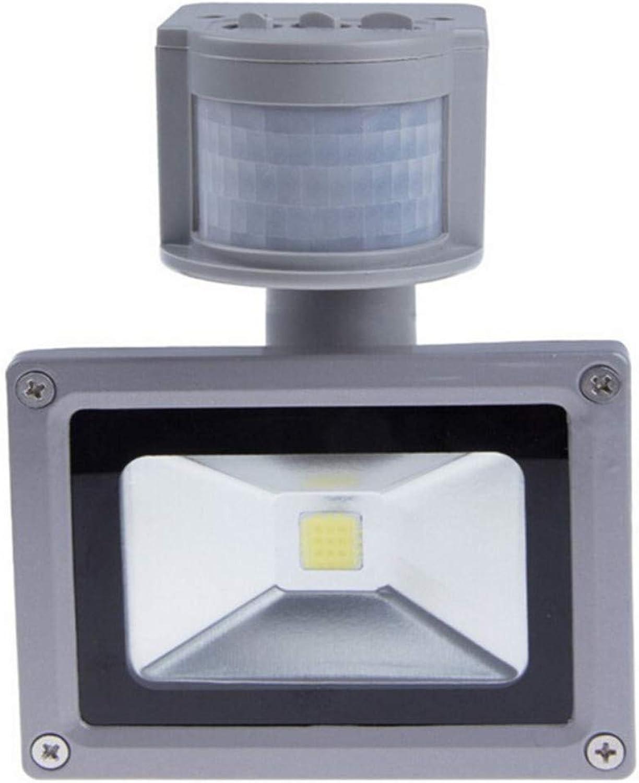 LED-Sensor LED 10 W 20 W 30 W 50 LED-Lampe 100 W PIR mit Reflektor für Bewegungssensor, kaltwei 30W