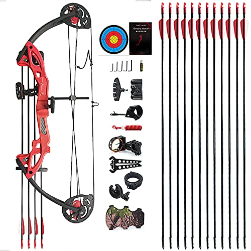 """PANDARUS Compound Bow Archery for Youth and Beginner, Right Handed,19""""-28"""" Draw Length,15-29 Lbs Draw Weight, 260 fps (Red)"""