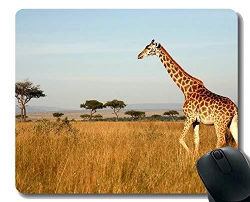 Spiel-Mäusematte, Giraffenlandschaft der wild lebenden Tiere Mauspad Genähte Grenze