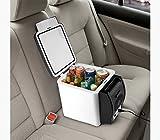 Peak - Nevera / calentador de alimentos de viaje, 6litros–2en 1:calor y frío–Ideal para coches, caravanas,...