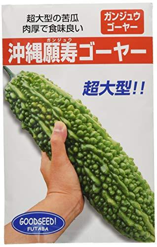 フタバ種苗 【うちな~交配】 沖縄 願寿ゴーヤー (苦瓜) 種・小袋詰(10ml)