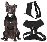Dexil Elite Range Hundegeschirr, gepolstert, wasserfest, verstellbar, Ring hinten und vorne (zum Vermeiden von Ziehen) - 2