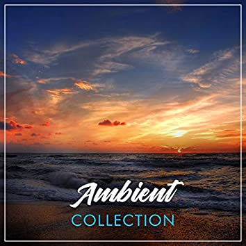 # Ambient Collection