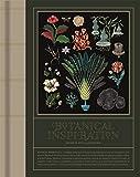 Botanical Inspiration: Nature in Art and Illustration