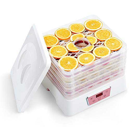 Affordable Household Small Food Dehydrator Machine Dried Fruit Timing Dryer Machine Electric Vegetab...
