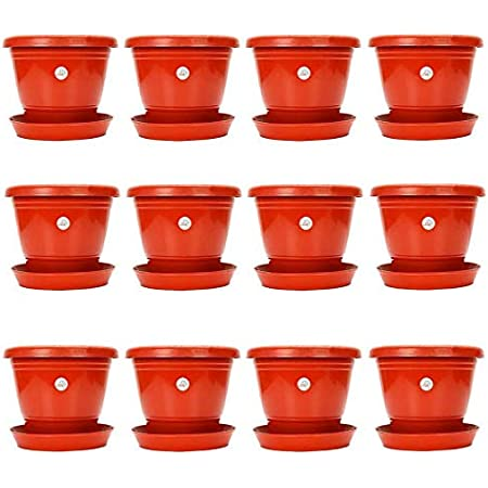 Kraft Seeds Plastic Pot with Bottom Plate, Red, 8 inch, Pack of 12