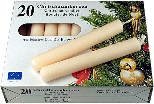 nk candles Set: 200 Nordlicht - Kontor Baumkerzen (10x 20er-Pack) Sparpack (Champagner)