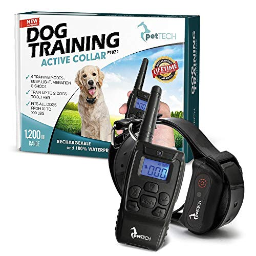 Top Rated Shock Collar for Puppies