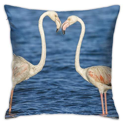 June flower Funda de almohada decorativa para el hogar, diseño de pájaros y flamencos, para regalo, para el hogar, sofá, cama, coche, 45,72 x 45,72 cm