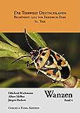 Wanzen, Band 4. Pentatomomorpha II.: Pentatomoidea: Cydnidae, Thyreocoridae, Plataspidae, Acanthosomatidae, Scutelleridae, Pentatomidae. (Die Tierwelt Deutschlands) - Ekkehard Wachmann