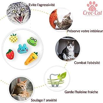 Croc-Cat Ensemble 5 Pièces Jouets à l'herbe à Chat+ Spray Cataire, Jouet Peluches pour Chat Interactif Catnip, Jouets à Mâcher pour Chaton Kitty Chat Pas Cher pour Animaux Naturel