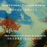 Quiet Forest / Flowing Stream