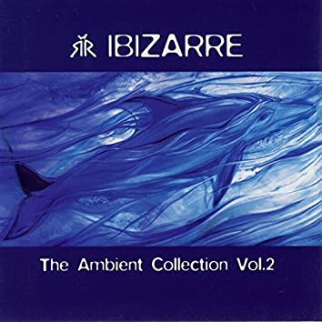 Ambient Collection Vol. 2