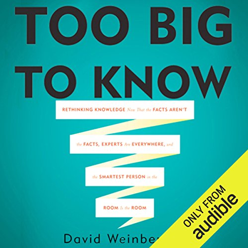 Too Big To Know audiobook cover art