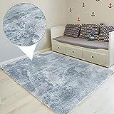Amazinggirl Tapis Salon Shaggy - Descente de lit Chambre Grande Taille Tapis Poils Longs Moderne tapid Moquette Poil Long tapi (Argent, 100 x 160 cm)