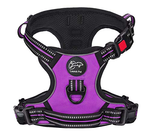 Launch Pet No-Pull Dog Harness Adjustable & Breathable Heavy Duty Reflective Vest Material with Front Clip and 2 Strong Leash Attachments & Easy Walk Control Handle for Small Dogs - (Small, Purple)