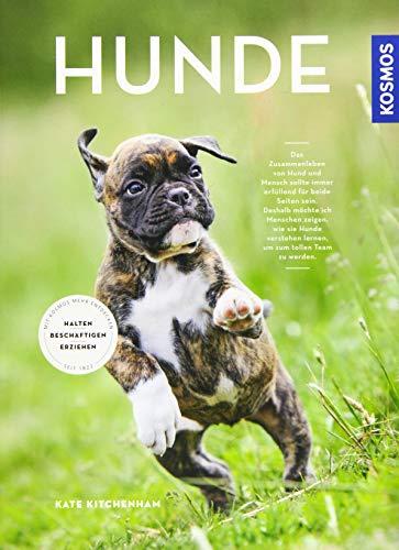 Hunde: halten, erziehen, beschäftigen