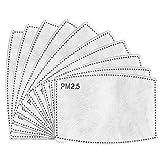 100PCS PM2.5 Filtro de carbón activado, 5 capas reemplazables, filtros antiniebla, filtro protector bucal para exteriores