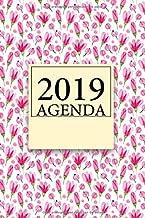 2019 Agenda: Agenda 2019, una hoja por dia para tener todas las horas bien agendadas. (Spanish Edition)