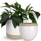 Extra Large Ceramic Planter