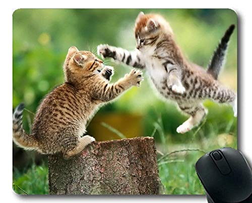 Yanteng Estera del ratón del Juego, cojín de ratón Animal de la Hierba del Gato del tocón del Juego, Estera del ratón para la computadora cat206