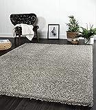 the carpet Port - Alfombra moderna de pelo largo para salón, suave hilado, color gris, tamaño: 80 x 140 cm