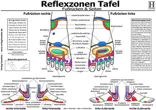Fussreflexzonen Tafel - Fussrücken & Seiten - A3 (laminiert)