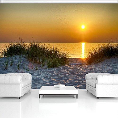 FORWALL Fototapete Vlies - Tapete Moderne Wanddeko Strand VEXXL (312cm. x 219cm.) AMF11577VEXXL Wandtapete Design Tapete Wohnzimmer Schlafzimmer
