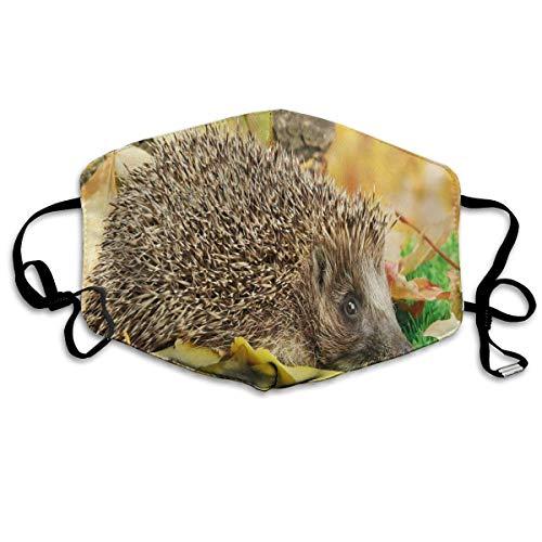 Comfortabele Ma-sk Mond Cover,Leuke Kleine Egel Op Herfst Bladeren In Bos Scènes Van Wereld,Gedrukte Gezichtsdecoraties