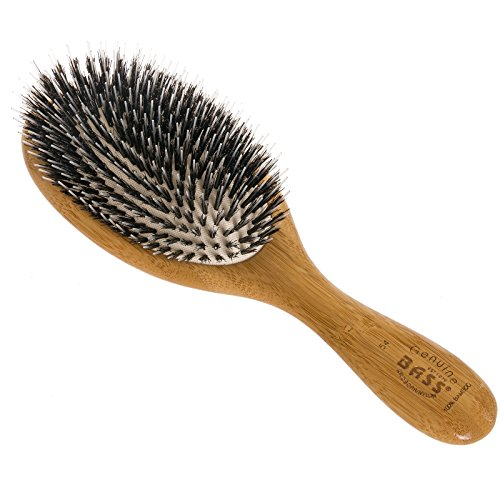 Brush - Large Oval Cushion Wild Boar/Nylon Bristle Wood Handle Bass Brushes 1 Brush