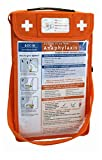 MyMediBag Insulated - Large A4 and Shoulder Strap - Medication Bag for Allergy and Asthma - Highly Visible and Noticeable in The case of an Emergency