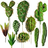 Cayway 10 Pz Suculentas Falsas Plantas de Cactus Artificiales, Suculentas Plantas...