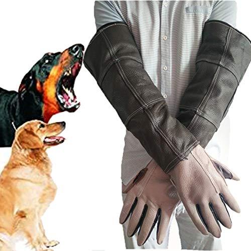 YAOBAO Tiergartenhandschuhhandschuhe, Kratz- / bissfest, Kuhfellstulpe für Hundekatze Vogelschlange Papagei Reptilhandling Falke-Handschuhe (60 cm),S
