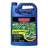 BioAdvanced 704655A Brush Killer Plus, Kills Poison Ivy, Blackberry, Kudzu, 1-Gallon, Ready-To-Use