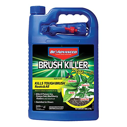 BioAdvanced 704655A Brush Killer Plus, Poison Ivy Killer and Stump Remover, 1-Gallon, Ready-to-Use