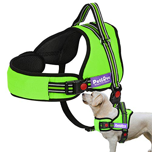 PetLove Dog Harness, Adjustable Soft Leash Padded No Pull Dog Harness for Small Medium Large Dogs, Green