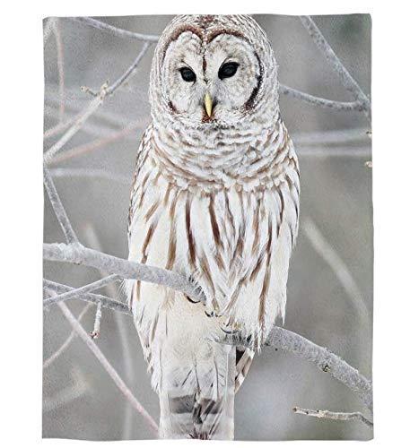 N \\ A Winter-Decke mit Eulenmotiv, auf den Ästen stehend, grau, bedruckt, weich, für Jungen und Mädchen, für Babybetten