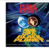 Weitaian Public Enemy Fear of a Black Planet Albumcover