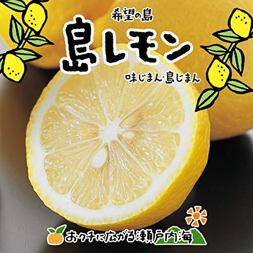 希望の島 レモン 3kg 家庭用 サイズ込 残留農薬ゼロ 国産 愛媛 中島産