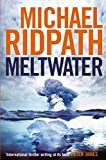 Image of Meltwater (Magnus Iceland Mystery)