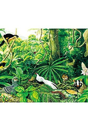 vzvzv Puzzle 1000 Teile Der Montane Regenwald Papier Original Exquisite Handgemalte Puzzles Ökosystem Puzzle Spielzeug Geschenk