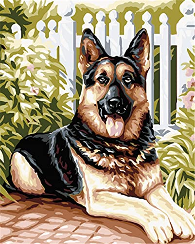 N\A Pinturas con Numeros para Adultos DIY Perro De Jardín Pintura Kit For Mayores Avanzada Niños Joven Pintar Numeros