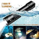 Best Dive Torches - ORCATORCH D520 Scuba Dive Light 1000 Lumens Rechargeable Review